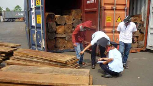 Tạm giữ khoảng 10 tấn gỗ quý không đảm bảo thủ tục giấy tờ