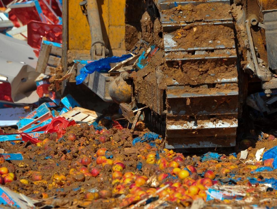 Vi phạm lệnh phản trừng phạt của Nga, hàng trăm tấn thực phẩm phương Tây bị tiêu hủy