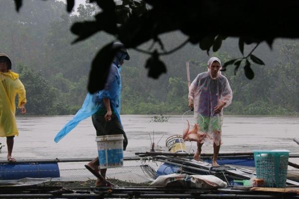 Quảng Nam: Hồ xả lũ, người nuôi cá thiệt hại nặng