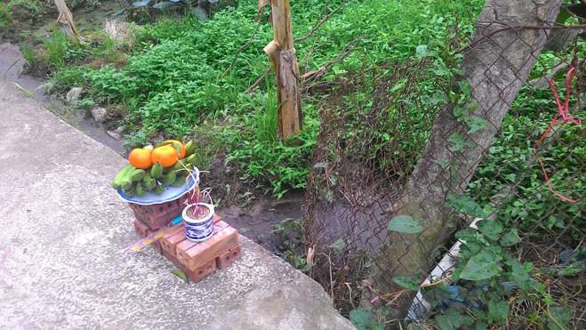 3 anh em giết hàng xóm vì để trâu vào vườn rau