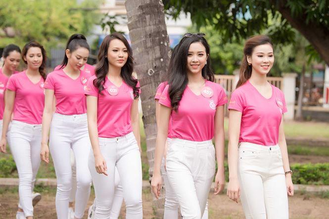 Thí sinh Hoa hậu Việt Nam mang hoa trắng tới viếng mộ Hàn Mặc Tử - ảnh 1