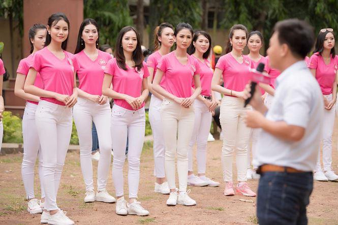 Thí sinh Hoa hậu Việt Nam mang hoa trắng tới viếng mộ Hàn Mặc Tử - ảnh 2
