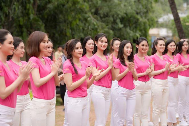 Thí sinh Hoa hậu Việt Nam mang hoa trắng tới viếng mộ Hàn Mặc Tử - ảnh 3