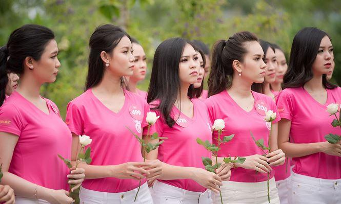 Thí sinh Hoa hậu Việt Nam mang hoa trắng tới viếng mộ Hàn Mặc Tử - ảnh 6