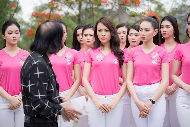 Thí sinh Hoa hậu Việt Nam mang hoa trắng tới viếng mộ Hàn Mặc Tử - ảnh 10