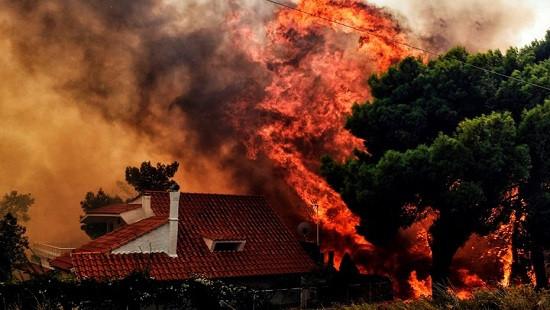 Có bàn tay phá hoại trong thảm họa cháy rừng tồi tệ nhất ở Hy Lạp