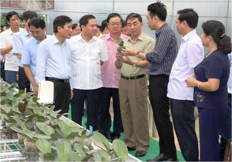 Khởi sắc nông thôn mới các xã ven đô Thành phố Thái Nguyên