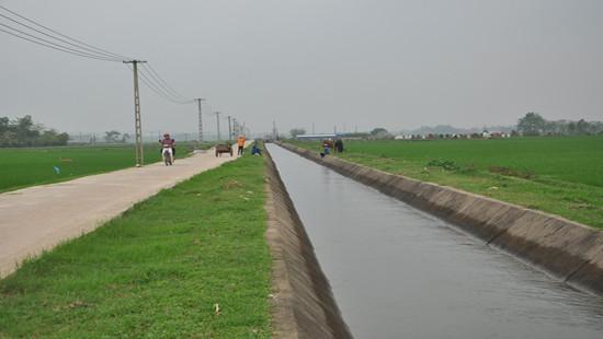 Đảm bảo cấp 85% nước tưới cho diện tích đất lúa 2 vụ