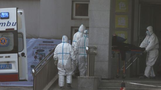 Những điều cần biết về virus corona mới gây viêm phổi, gieo rắc nỗi lo sợ trên toàn thế giới