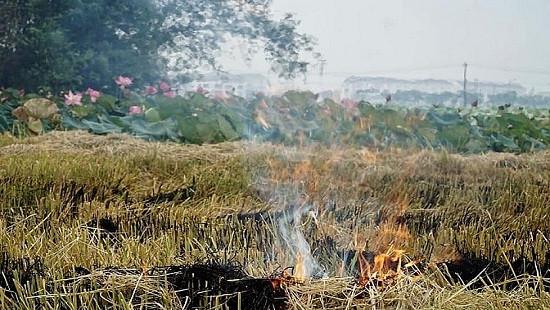Người phụ nữ tử vong khi đi đốt rơm ngoài đồng