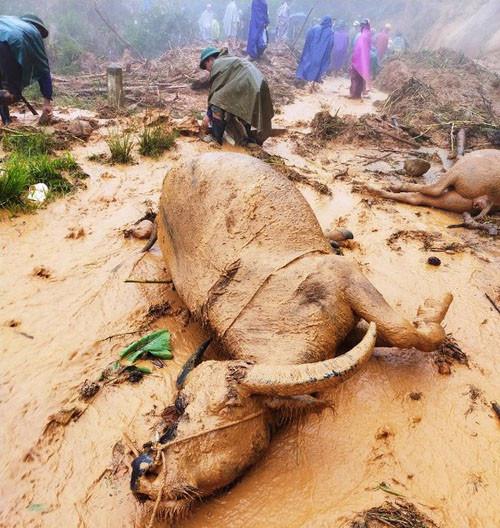 Nghệ An - Hà Tĩnh: Nhiều nơi còn bị ngập úng sạt lở sau cơn bão số 5