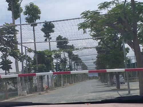 Dự án nuôi cá rô phi Isreal công nghệ cao tại Nghệ An thực hiện sai quy hoạch?
