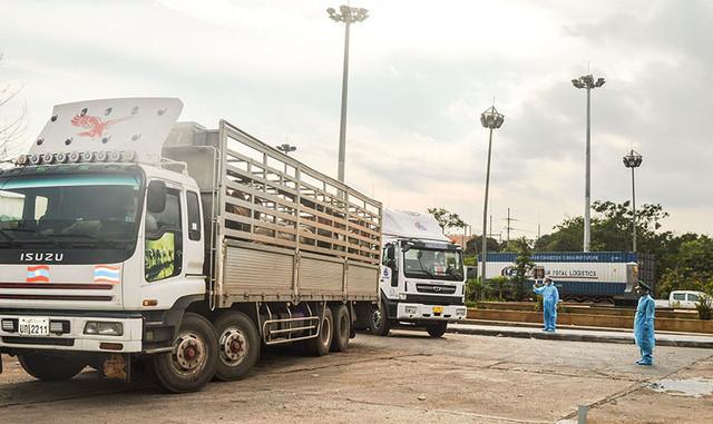 Bộ NN-PTNT đề nghị loạt giải pháp cấp bách để lưu thông hàng hóa - Ảnh 1.