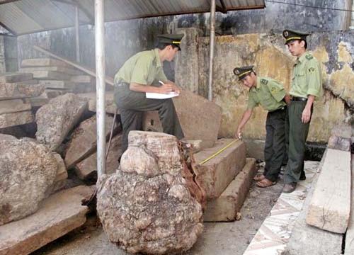 Bắt khẩn cấp 2 đối tượng khai thác 169,919 m3 gỗ quý hiếm