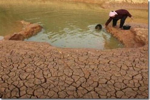 Khô hạn kéo dài gây thiệt hại cho các tỉnh nam Trung Bộ, Tây Nguyên và Nam Bộ