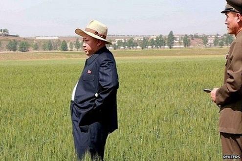 Hạn hán kéo dài, Triều Tiên kêu gọi Liên Hợp Quốc hỗ trợ