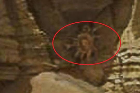 """""""Quái vật"""" trên sao Hỏa có hình dáng giống con cua"""