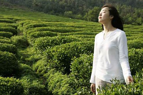 Bí quyết làm đẹp từ trong ra ngoài với trà xanh