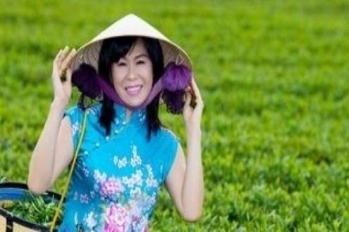 Tin tức pháp luật ngày 17/11: Bắt nghi can hạ độc nữ doanh nhân trà Ô Long