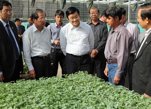Chủ tịch nước thăm một số mô hình nông nghiệp ứng dụng công nghệ cao tại Lâm Đồng