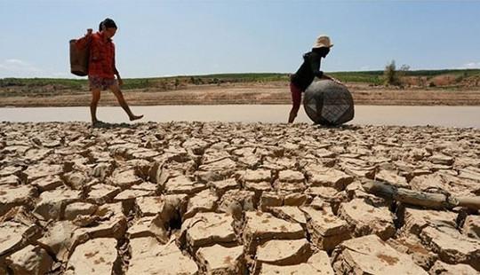 Chính phủ hỗ trợ  231,5 tỷ đồng khắc phục hậu quả hạn hán và xâm nhập mặn