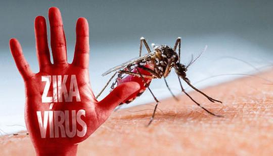 Hơn 10.000 người lây nhiễm virus Zika tại Puerto Rico, Mỹ ban bố tình trạng khẩn cấp