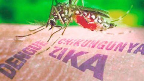 Một trường hợp mới nhiễm virus Zika không do đi du lịch ở bang Florida (Mỹ)