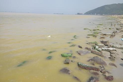 TT-Huế: Phân tích mẫu nước màu vàng xuất hiện gần cảng Chân Mây-Lăng Cô