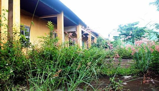 Gia Lai: Số liệu 245 phòng học bị bỏ hoang có thực tế?