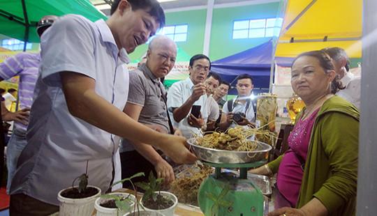 Chợ sâm Ngọc Linh thu về hơn 2,7 tỷ đồng