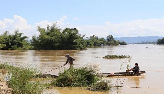 Tìm thấy thi thể 2 em học sinh bị lũ cuốn trên sông Krông Ana