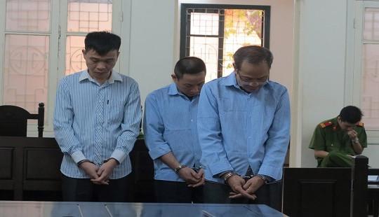 72 tháng tù cho nhóm bị cáo chuyên làm giả hồ sơ đấu giá ô tô