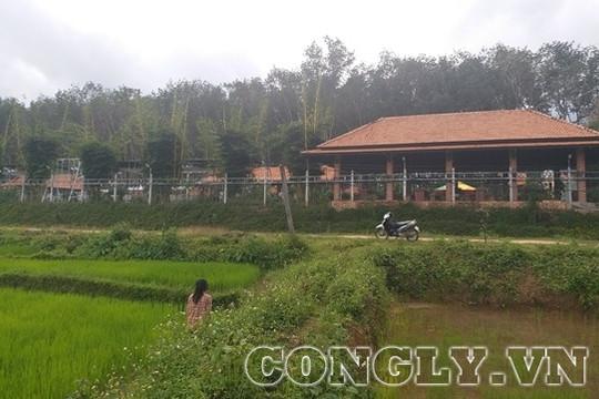 Hàng loạt công trình xây dựng trên đất trồng cây lâu năm