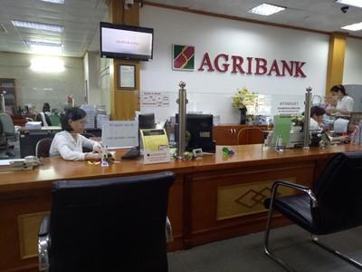Để dòng vốn tín dụng chảy vào lĩnh vực nông nghiệp sạch, nông nghiệp ứng dụng công nghệ cao được thông thoáng...