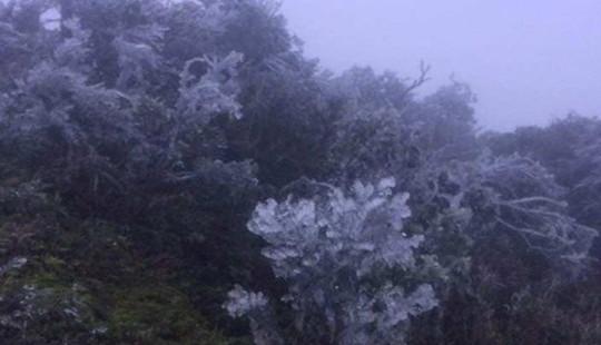 Dự báo thời tiết: Miền Bắc tiếp tục rét hại, vùng núi cao xuất hiện băng giá