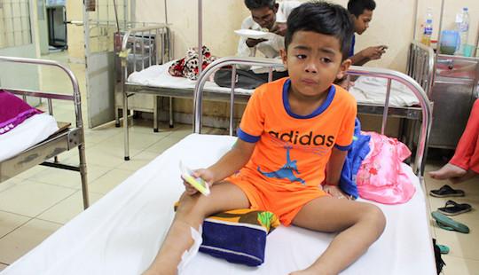 Bé 6 tuổi ở Sóc Trăng nhập viện vì bị khỉ hoang tấn công
