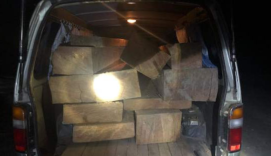 Tuần tra đêm phát hiện xe chở gỗ lậu