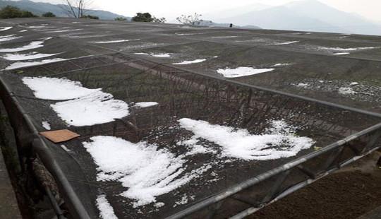 Bất ngờ xuất hiện mưa đá ở xã vùng biên Nghệ An