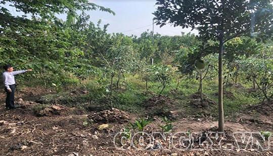 Nhiều hộ dân khiếu kiện UBND Huyện Cờ Đỏ (Cần Thơ) vì giá bồi thường đất quá thấp
