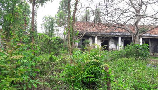 Nghệ An: Đất doanh nghiệp bỏ hoang, xã thiếu nơi xây phòng học