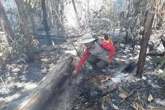 Cán bộ, nhân viên ban quản lý rừng phòng hộ Đăk Đoa bị đề nghị xử lý trách nhiệm