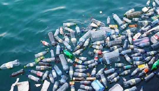 Không sử dụng túi nilon và sản phẩm nhựa dùng một lần từ tháng 11/2019