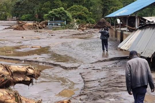 Tin vắn thế giới ngày 25/11: Sạt lở đất ở Kenya, 37 người thiệt mạng