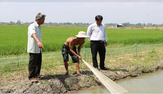 """""""Con tôm ôm cây lúa"""" mối lương duyên giúp nông dân thoát nghèo"""