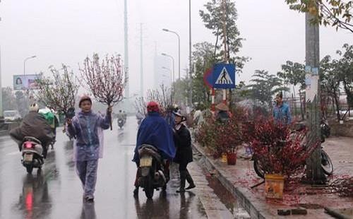 Thời tiết ngày 29 Tết (23/1): Sáng sớm có sương mù, trưa chiều hửng nắng