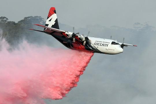 Tin vắn thế giới ngày 24/1: Rơi máy bay chữa cháy rừng tại Australia, ba người chết