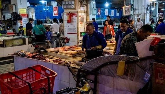 Trung Quốc cấm mua bán động vật hoang dã để chặn virus corona lây lan