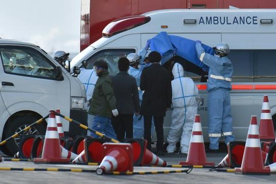 Kết quả xét nghiệm hành khách trên tàu du lịch Nhật Bản: Thêm 41 người dương tính với coronavirus