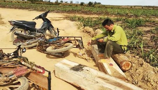 Đắk Lắk: Thêm một kiểm lâm của Vườn Quốc gia Yók Đôn bị lâm tặc đánh nhập viện