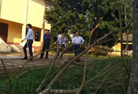 Lãnh đạo huyện Hoằng Hóa lên tiếng về việc bán 2 cây sưa